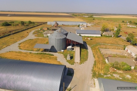 Как получать высокую урожайность в засушливых условиях: опыт ООО «Фермер»