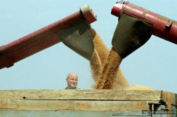 Как аграриям удалось заработать во время карантина