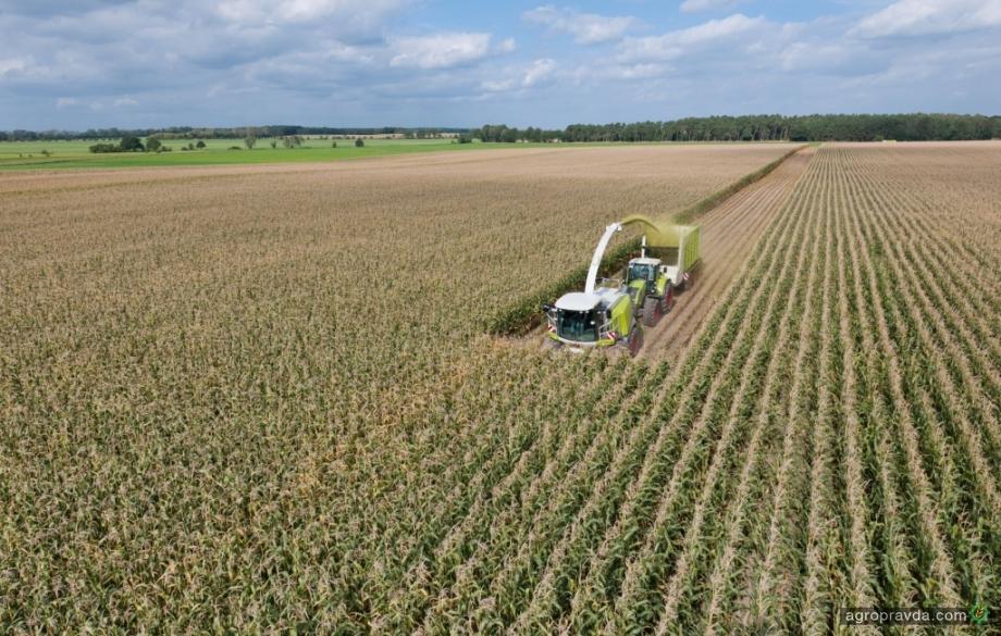 Claas рассчитал  убытки при недомолоте зерен кукурузы на силос
