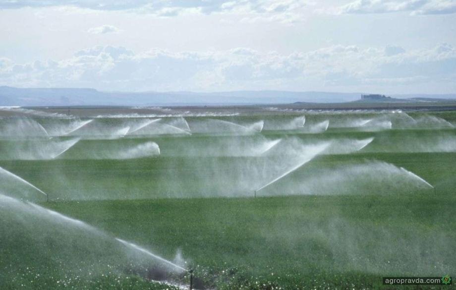 В Украине создали 15 сортов и гибридов растений, адаптированных к условиям орошения