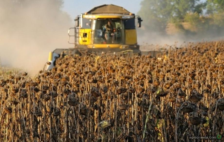 Погодные условия привели к ухудшению вегетации поздних сельхозкультур