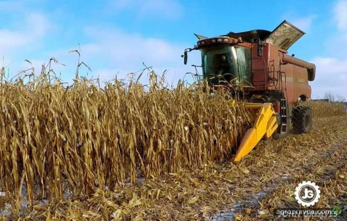 «Тест-драйв жатки на день»: новые отзывы аграриев