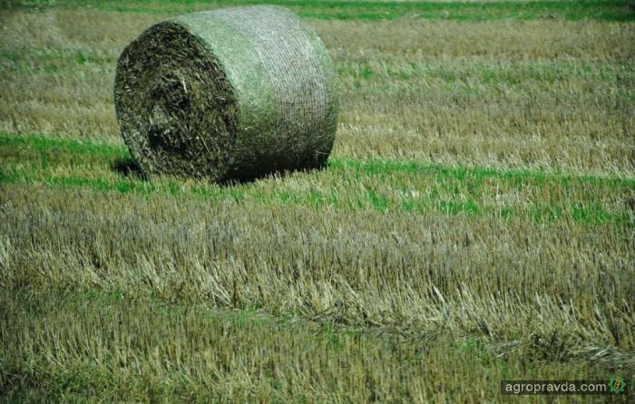 Агростраховой рынок Украины разогревается