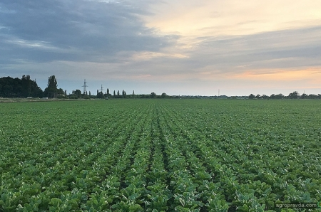 Почему аграрии уходят из агробизнеса