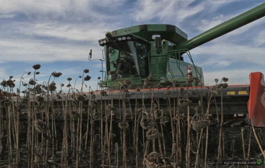 Во Львовской области выросла урожайность сои и подсолнечника