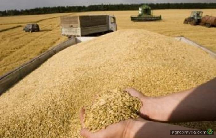 Экспорт зерновых превысил 21,3 млн. тонн