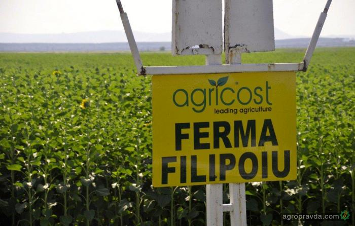 В Европе продается гигантская ферма