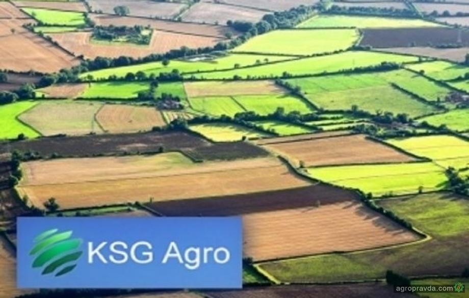 KSG Аgro в 2018 году увеличил валовый доход на 7%
