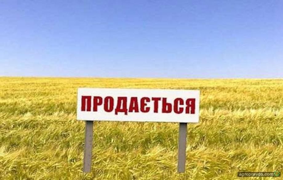 Продажа земли иностранцам может начаться через 3 года