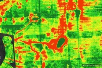 Почему деньги на агроинновации уходят в трубу