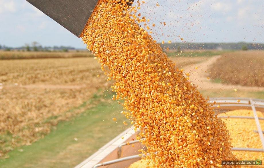 Украина экспортировала почти 39 миллионов тонн зерновых