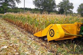 Как жатка может увеличить урожай кукурузы