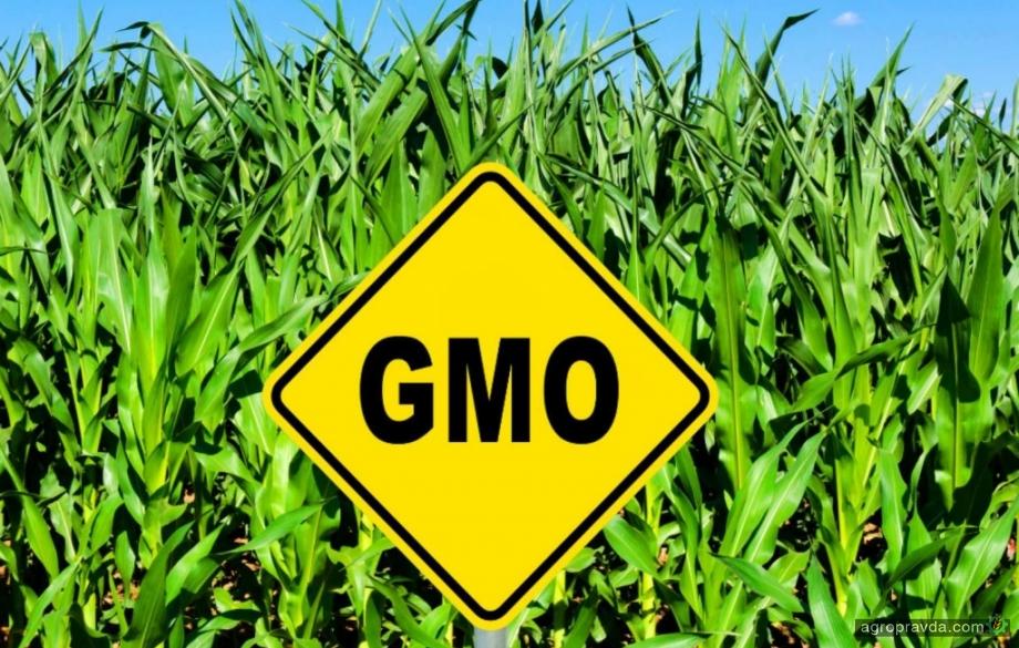 В Украине усилят контроль за ввозом семян с ГМО