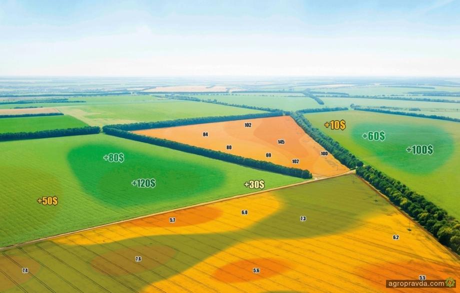 BASF и отечественный AgriLab начали сотрудничество в области точного земледелия