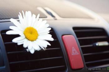 В сети АИС можно выгодно подготовить авто к сезону