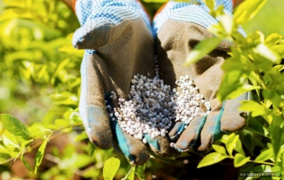 Как производители удобрений из РФ выдавливают с рынка украинский химрпом