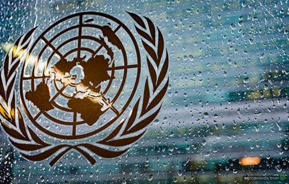 Украина вошла в состав Комитета по всемирной продовольственной безопасности ООН