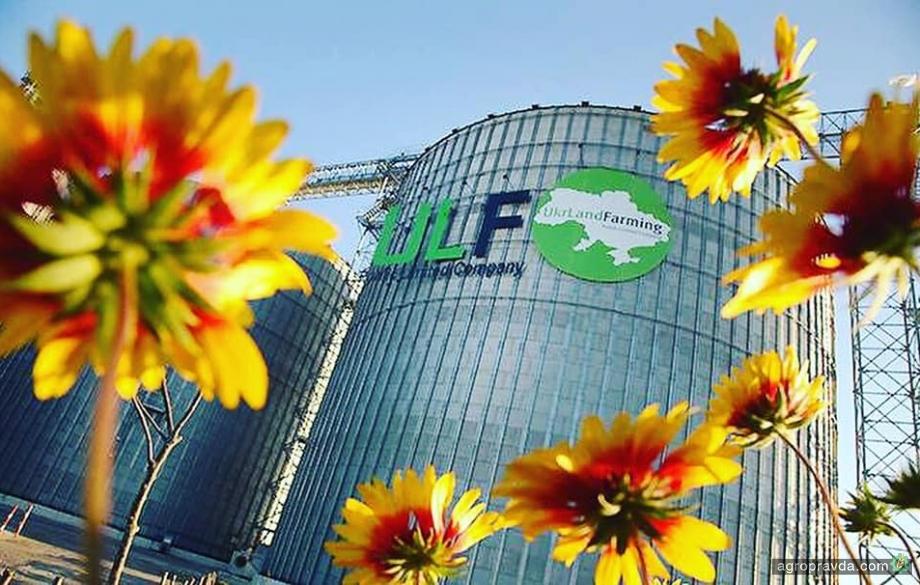 37 предприятий «Укрлендфарминг» остановили производство