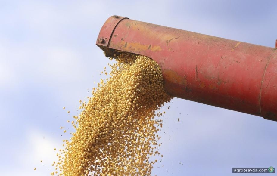 Подсолнечник и соя дешевеют вслед за растительными маслами