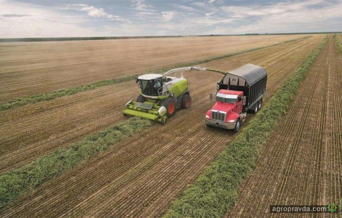 Сельхозпродукция в Украине подорожала на 10%