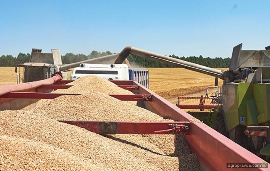 Принято постановление об упрощении международной торговли зерновыми