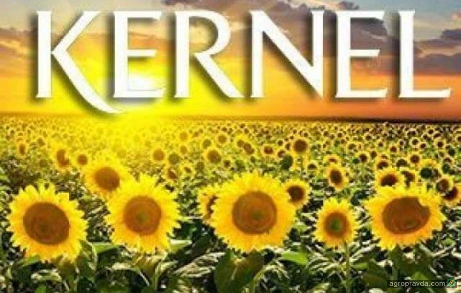 «Кернел» начали прием зерна урожая-2019