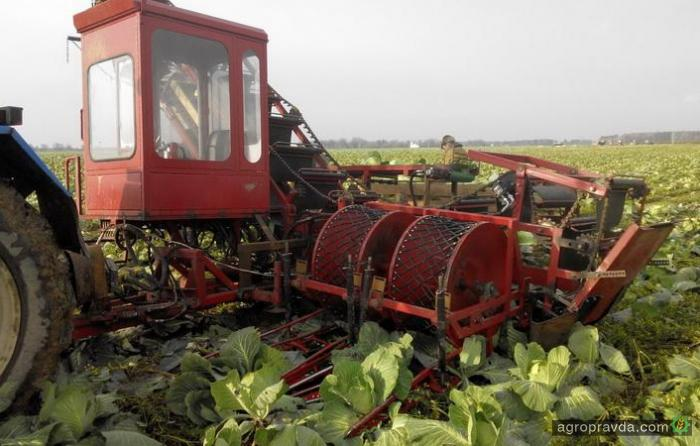 Беларусами разработан первый капустоуборочный комбайн