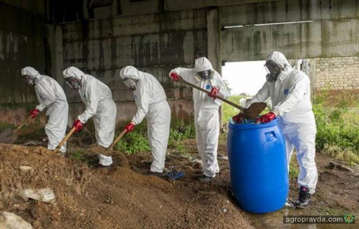 Интерпол и ФАО обеспокоены оборотом незаконных пестицидов в Украине