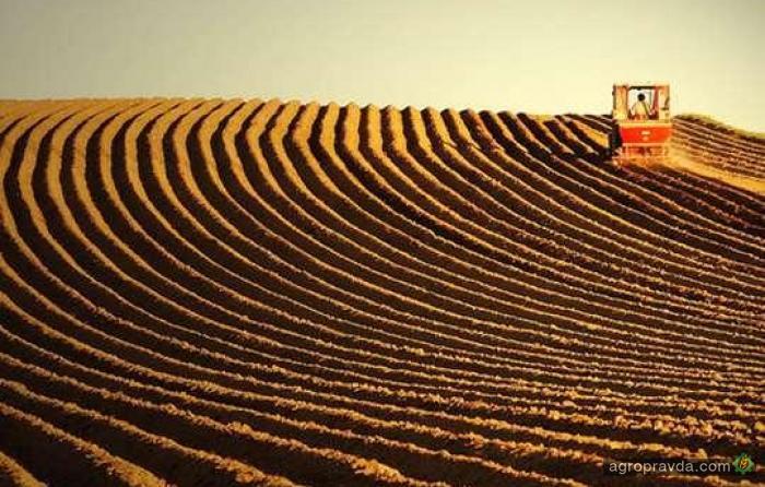 В Украине пересчитают сельхозземли