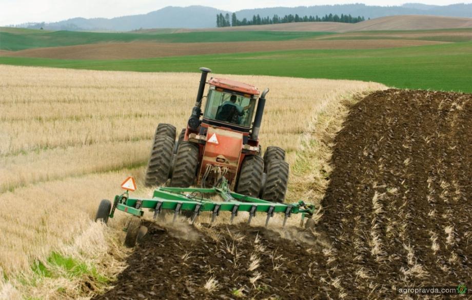 Сколько может стоить гектар земли в Украине