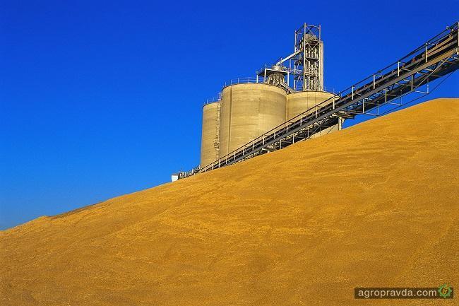 Украинские аграрии намолотили 31 млн тонн ранних зерновых