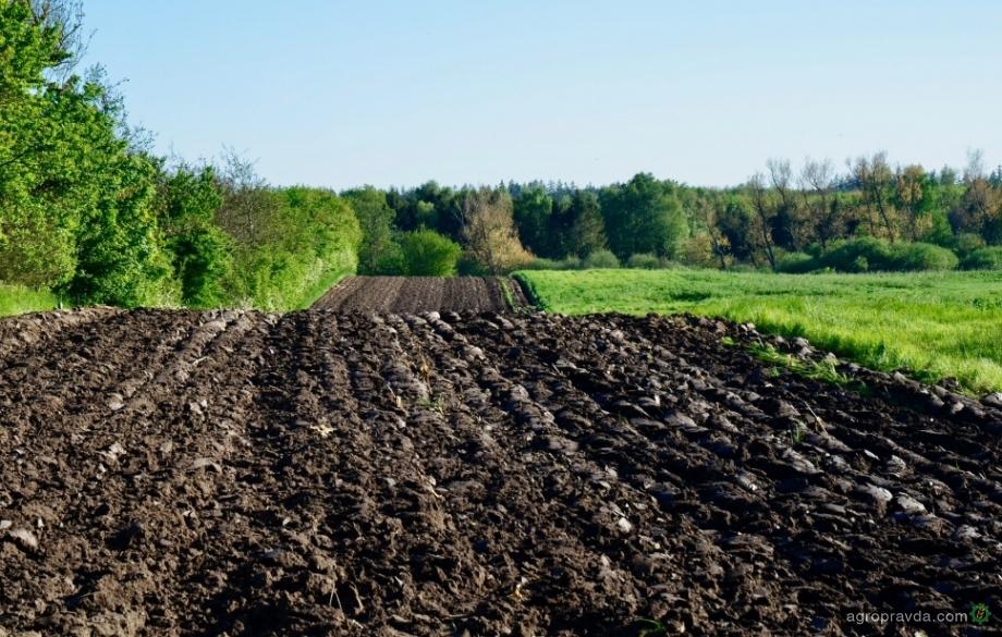 К посевной приступили хозяйства агрохолдинга KSG Agro