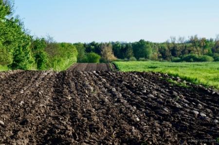 Пандемия коронавируса может стать катализатором развития сельских территорий