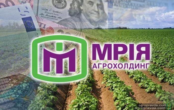 Агрохолдинг «Мрия» уже готовятся продавать