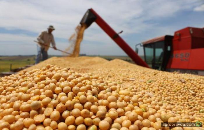 Украина может поставить рекорд по переработке сои