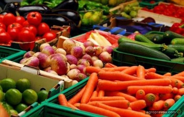 Сельхозпроизводство в Украине выросло на 6,3%