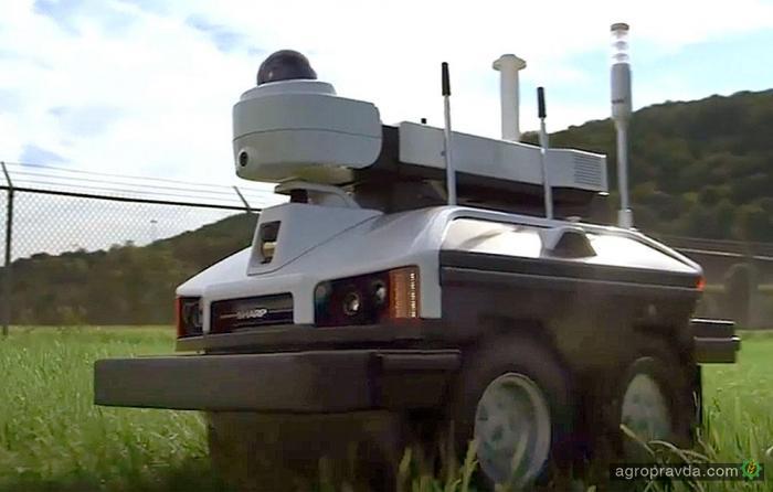 Разработан робот для охраны конопляных полей. Видео