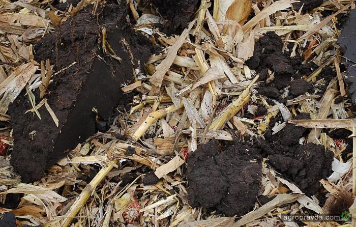 Процедура Easy Leasing позволяет приобрести сельхозтехнику.