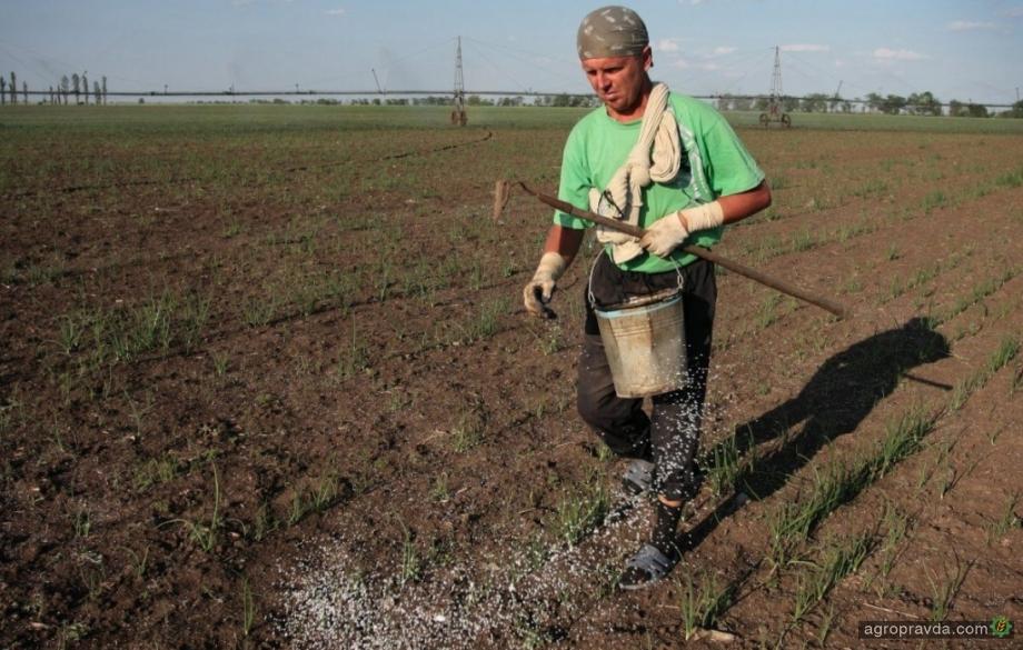Санкции на российский импорт не повлияют на цену удобрений: МинАПК