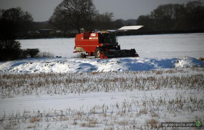 Как комбайны работают зимой. Фото