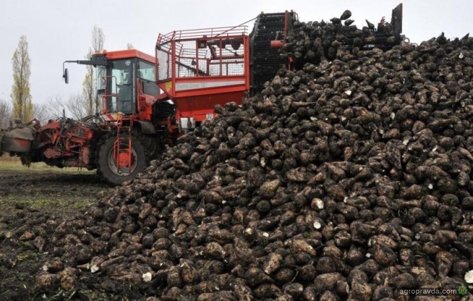 Сколь ко сахара произведено в Украине