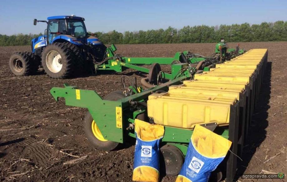 В «Суфле Агро» представили два новых гибрида кукурузы