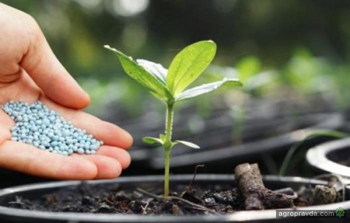 Аграрный фонд начал реализацию минудобрений