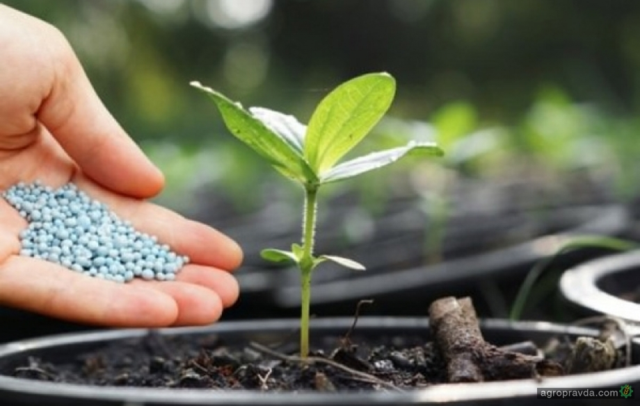 Украина продолжает наращивать импорт удобрений