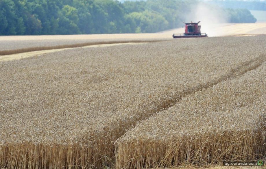 Страхование сельхозпродукции может заработать уже в этом году