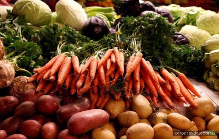 В Украине выросли цены на сельхозпродукцию
