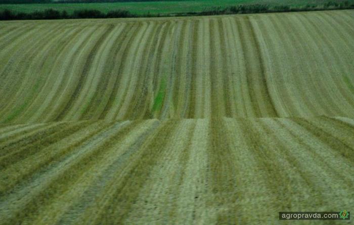 В Украине хотят ограничить максимальную площадь земучастка у одного владельца