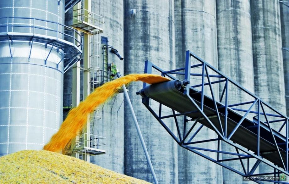 Четверть зерна в Украине идет на внутреннее потребление