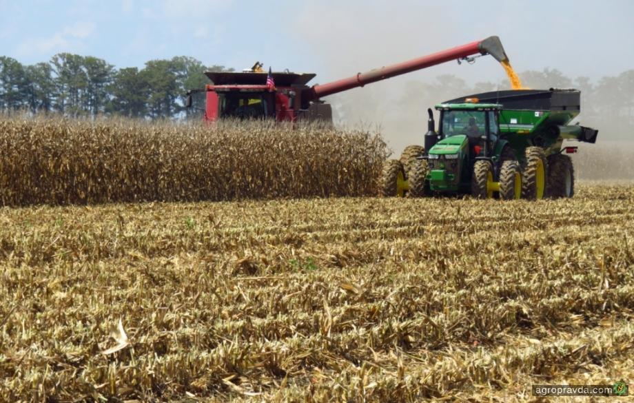 В Полтавской области «на круг» собрано почти 7 т/га кукурузы