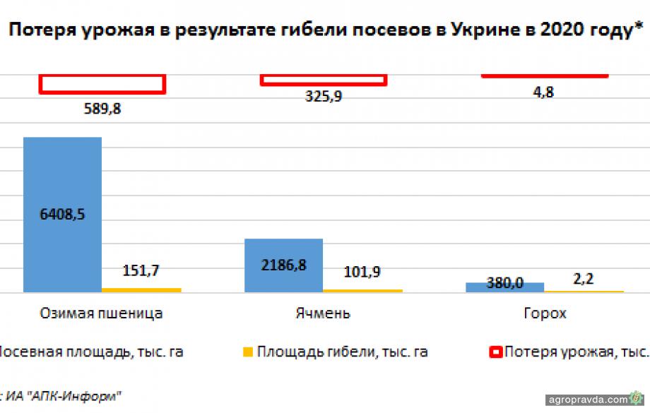 Сколько тонн зерна Украина уже потеряла в 2020 году
